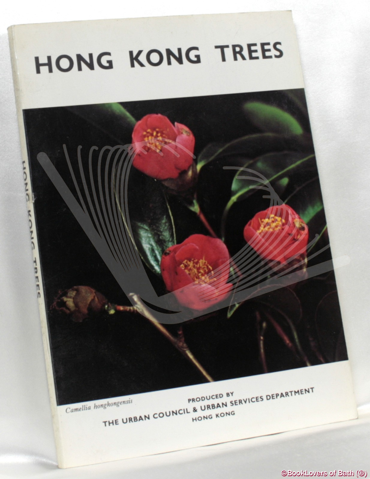 Thesis binding service singapore