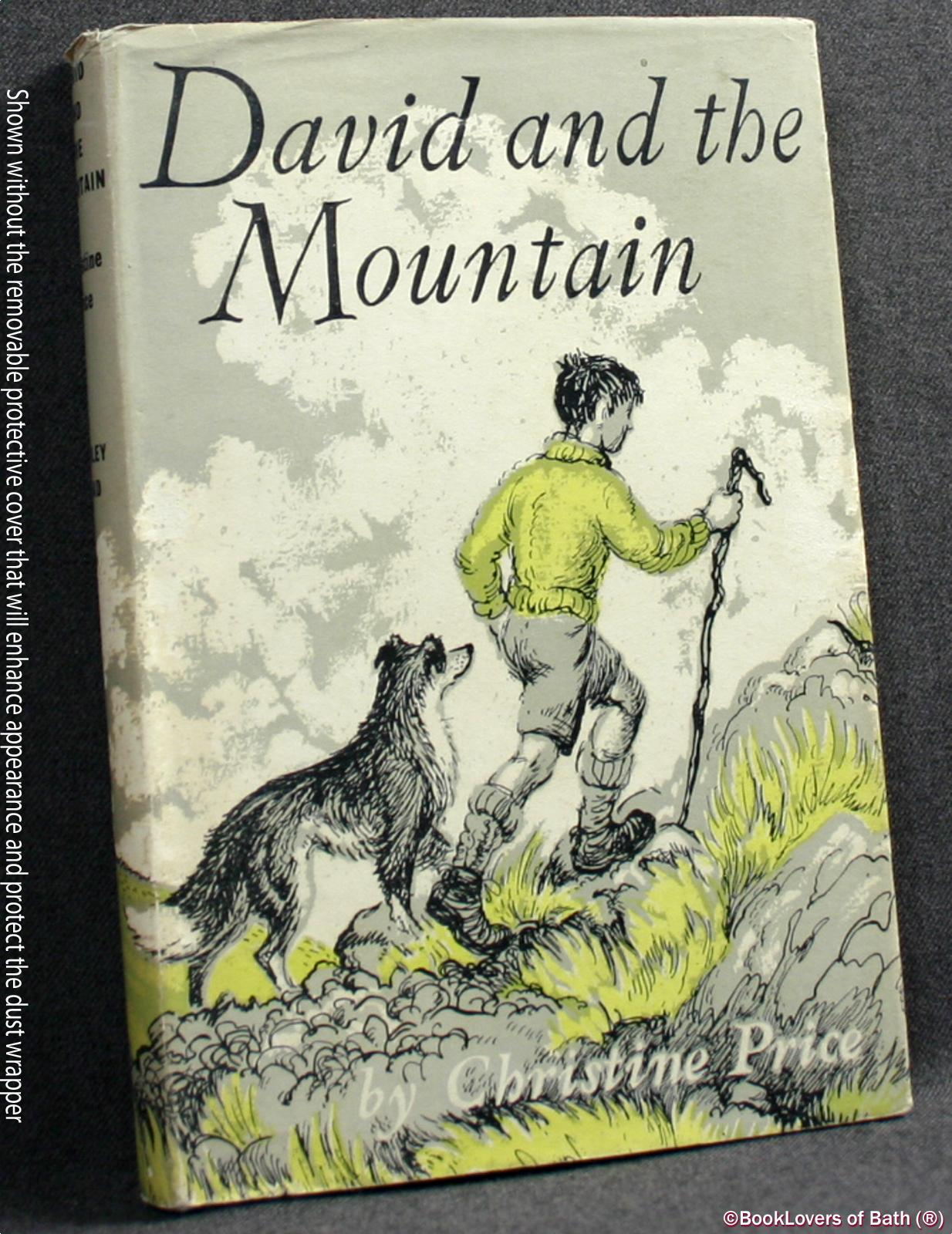 David and the Mountain - Christine Price
