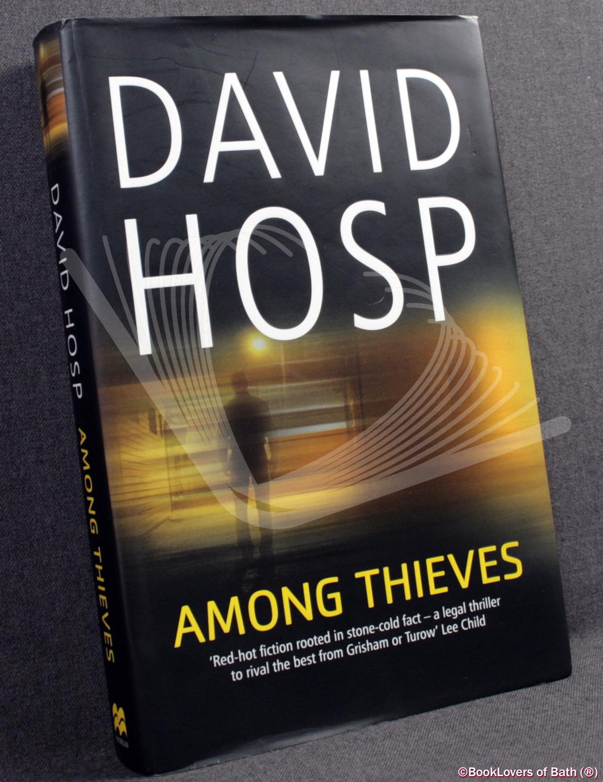 Among Thieves - David Hosp