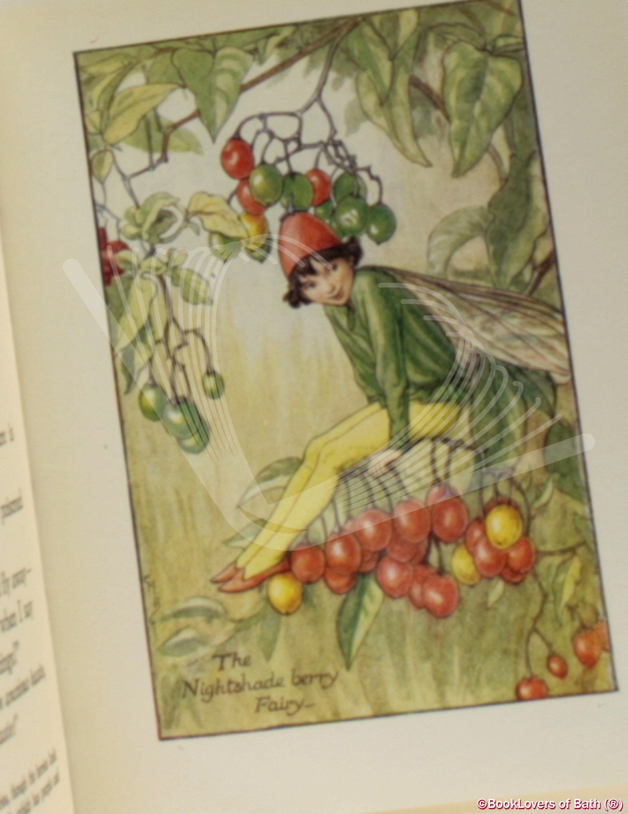 Flower Fairies of the Autumn: With the Nuts and Berries They Brin