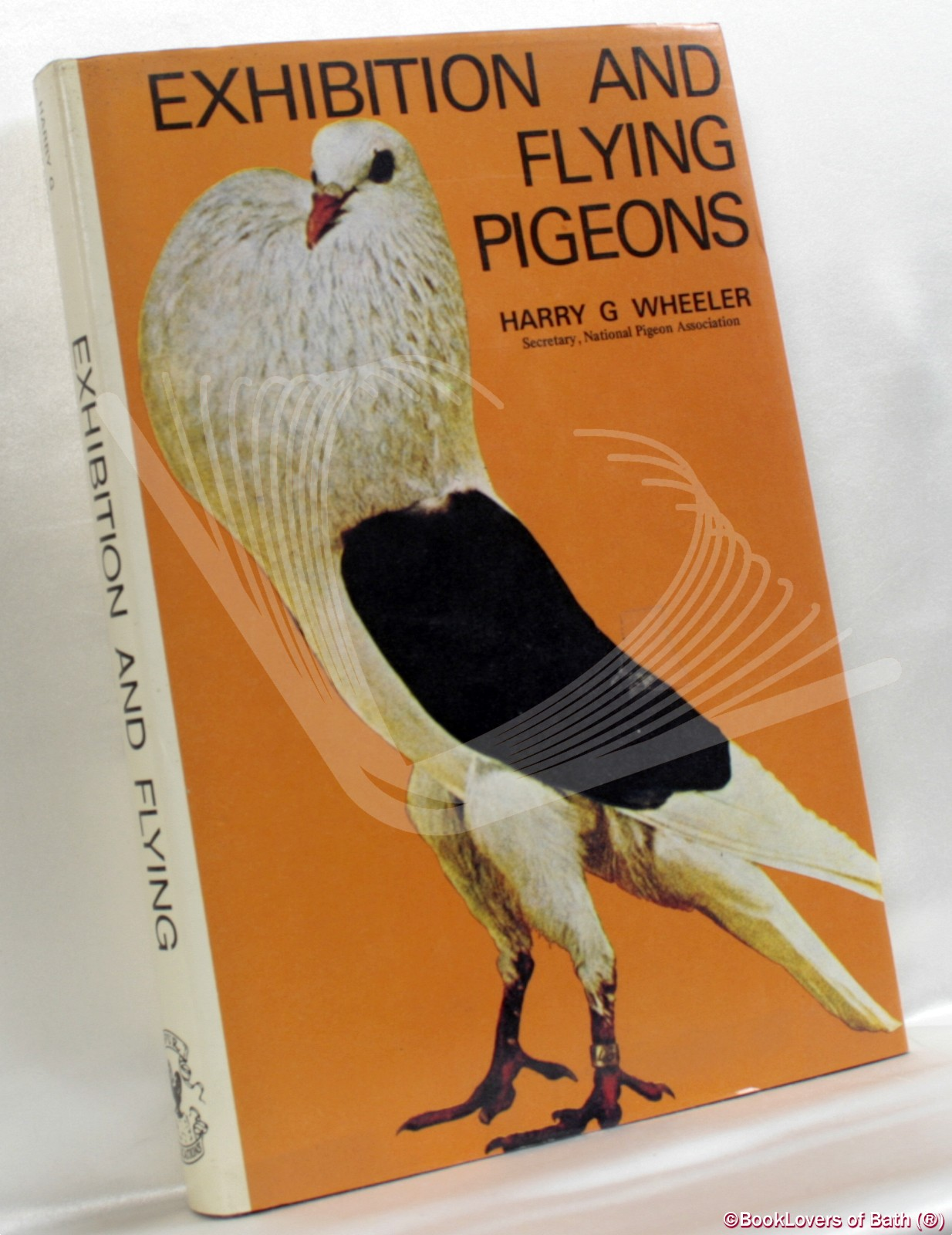 Exhibition and Flying Pigeons - Harry G. Wheeler
