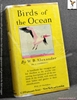 Birds of the Ocean: A Handbook for Voyagers and for Dwellers at t