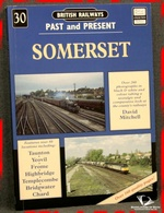 Somerset David Mitchell