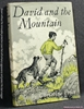 David and the Mountain Christine Price